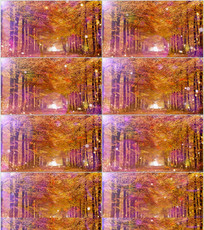 温馨枫树林舞台背景视频