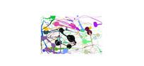 彩色抽象画模型