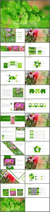 绿色绿叶商务工作汇报PPT模板