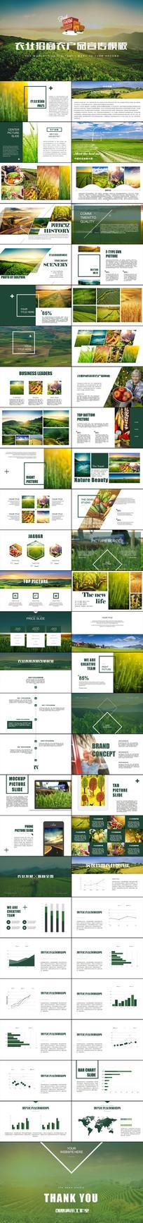 绿色生态农业招商农产品种植PPT模板