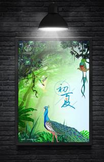 热带雨林初夏海报