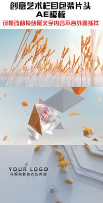 创意艺术栏目企业包装ae模板