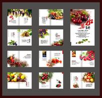 水果宣传画册