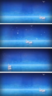 东方天鹅湖蓝色舞蹈背景视频