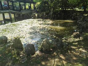 中式叠石水池水景图片