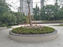 公园圆形花坛树池座椅 JPG