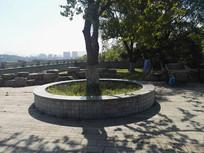 圆形树池座椅 JPG