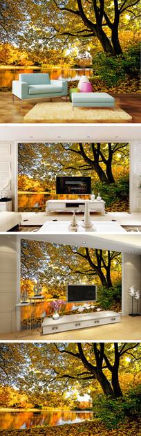 秋天清晨风景背景墙