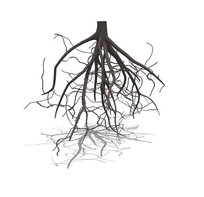 树枝吊顶装饰