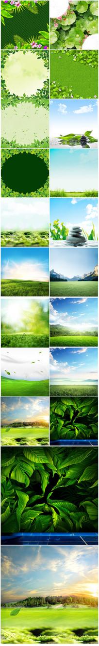 踏春绿色草坪主图背景