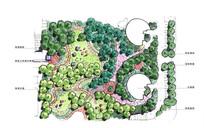 绿地公园景观平面