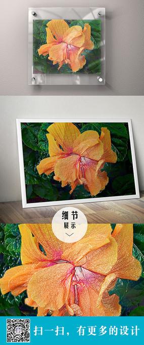 橙色的立体花朵装饰无框画