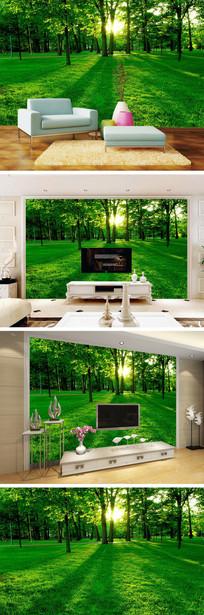绿色草地树林背景墙