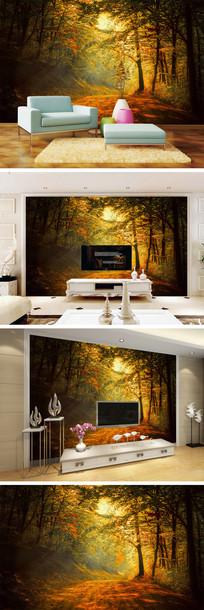秋天黄昏树林背景墙