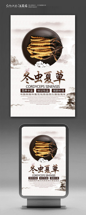 中药材冬虫夏草海报设计