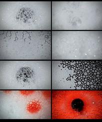 肥皂泡的变化视频 mp4