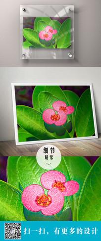 花卉的立体装饰画