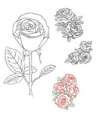 手绘线条玫瑰花素材 PSD