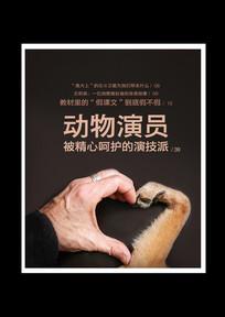 动物演员海报设计psd分层