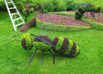 蜜蜂造型立体花坛 JPG