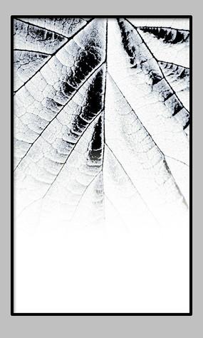 森系复古装饰画