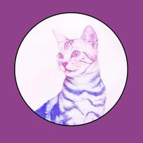 水彩猫无框画 PSD