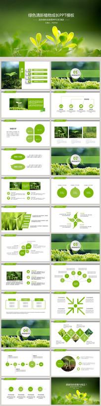 绿色清新植物成长PPT模板