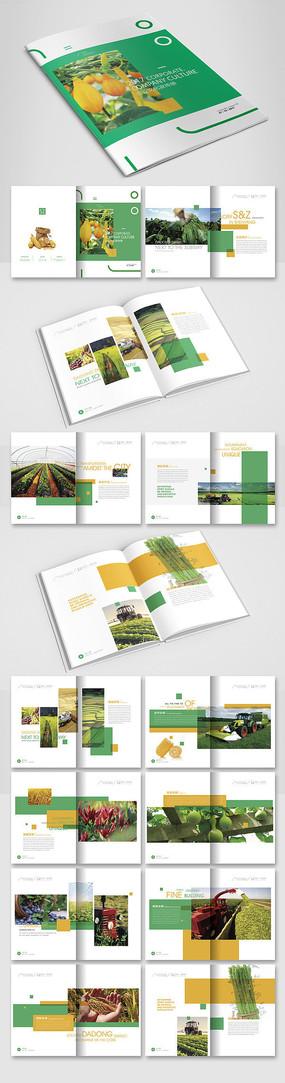 农产品宣传册