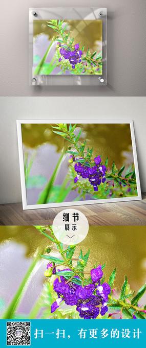 紫色的花卉立体装饰画