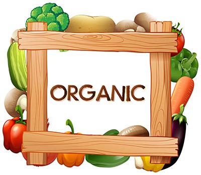 新鲜蔬菜木板边框素材