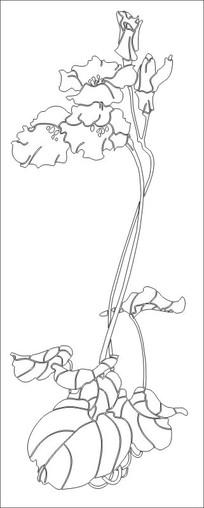 皇家贵族雕刻图案