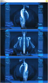 科技医学脊椎背景视频素材
