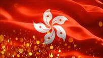 旗帜香港区旗特写视频素材