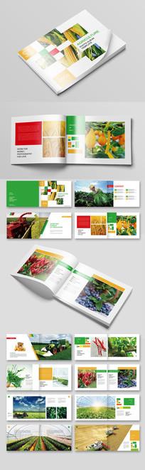时尚农业宣传册