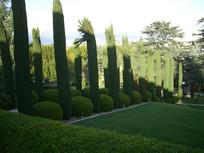 住宅小区植物景观
