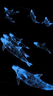 海洋蓝色粒子海豚视频素材 mov