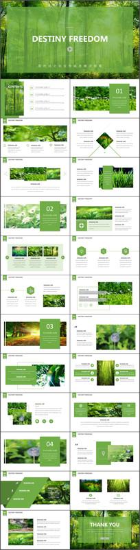 绿色自然图片排版PPT模板