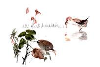 国画鸭啄食设计用素材