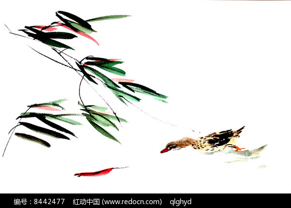 鱼戏鸭图国画设计用素材图片