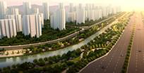 滨河景观带绿化设计鸟瞰图