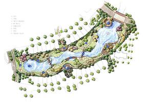 滨水植物配置平面