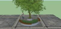 弧形木制树池 skp