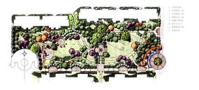 社区植物配置平面图
