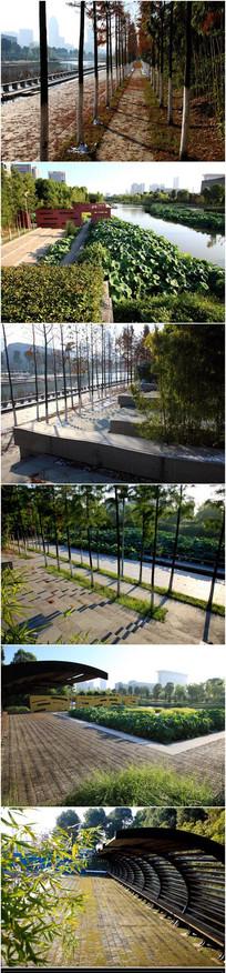 滨水公园设计效果图