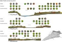 植物种植设计分析 JPG