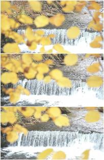 瀑布水流秋天树叶落叶实拍视频