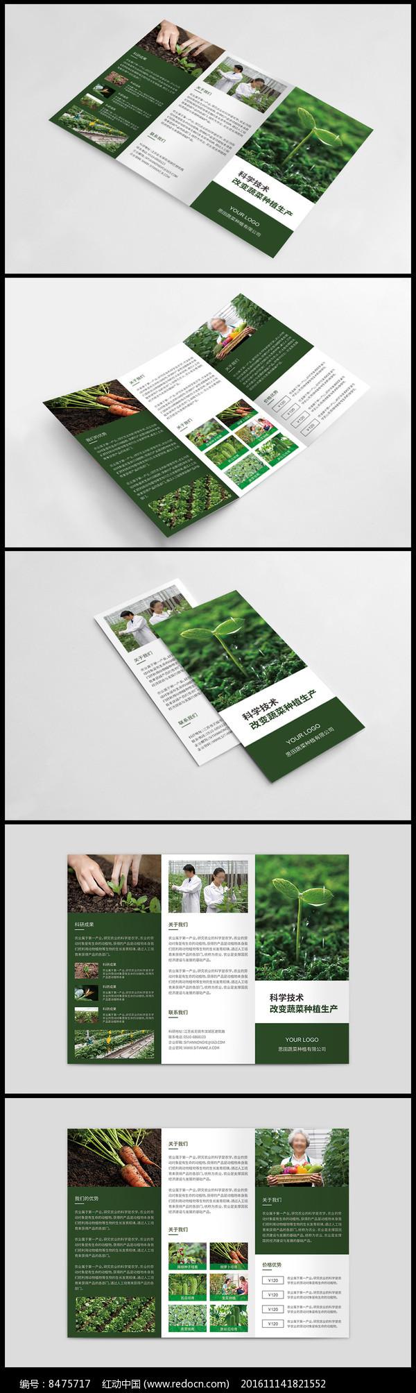 生态农场三折页设计图片