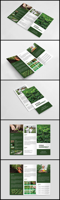 生态农场三折页设计