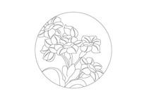 水仙花局部圆形雕刻纹样
