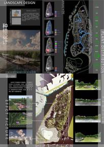公园种植设计